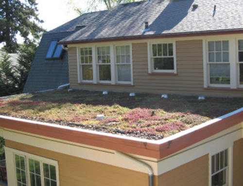 Green Roof, Portland, OR